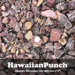 Hawaiian Punch, Pink, Rock, Omaha, elkhorn, landscaping, decorative, ground cover